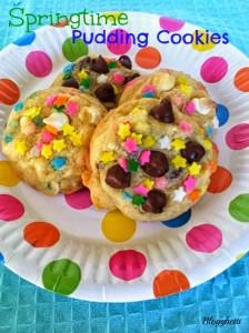 Springtime Pudding Cookies