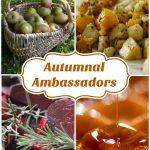 Autumnal Ambassadors