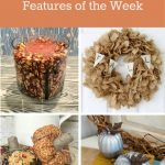 Happiness is Homemade Link Party:  Crafty Fall Decor