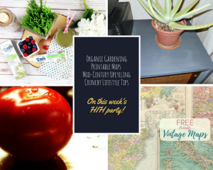 Happiness is Homemade Link Party:  Spring Cleaning for Your Home and Garden