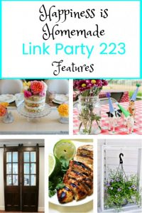 Happiness is Homemade Link Party features Summer Projects