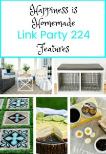 Happiness is Homemade Link Party: DIY Summer Features