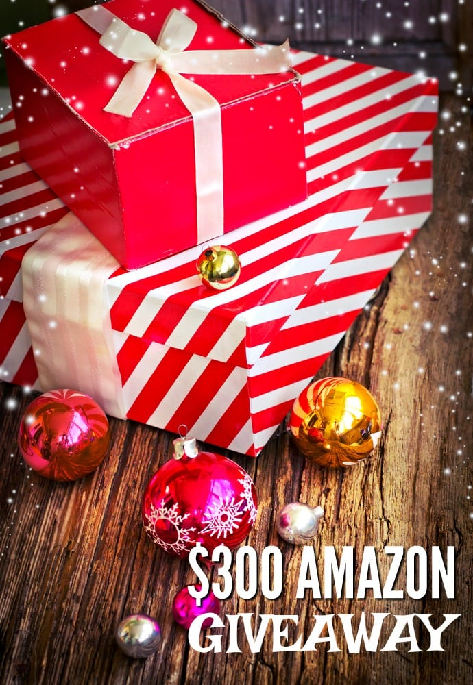 20 Christmas Gift Ideas for Anyone on Your List (and a fabulous ...
