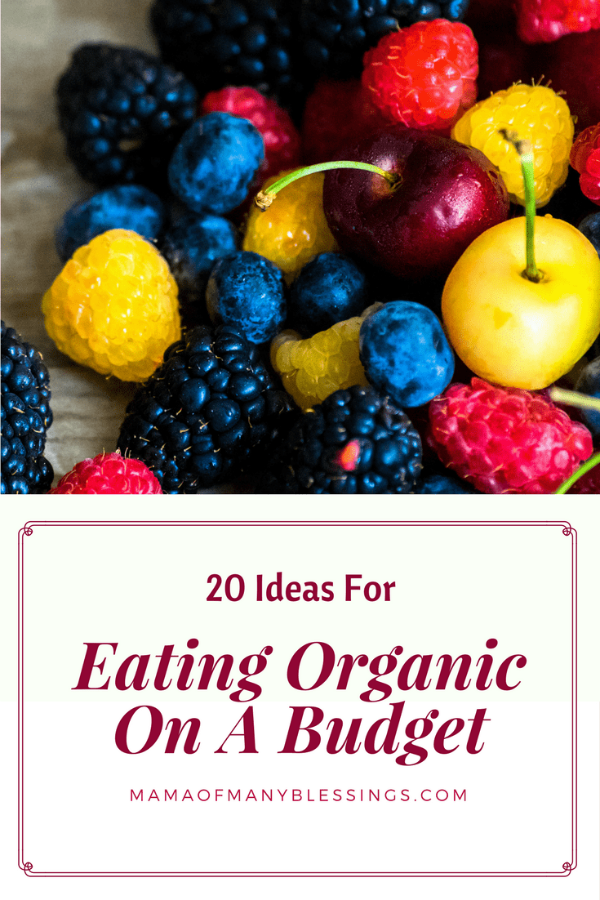 various fruits with an overlay of words that rad 20 ideas for eating organic on a budget